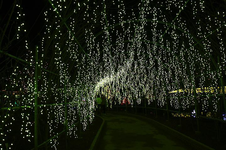 ashikaga0205_4214.jpg