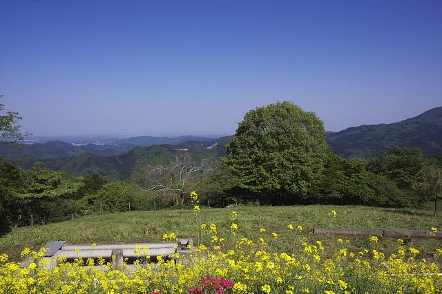 chichibu_9241.jpg