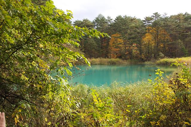 fukushima15_3335.jpg