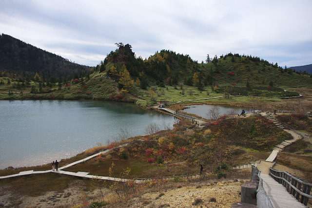 shirane0106_2815.jpg