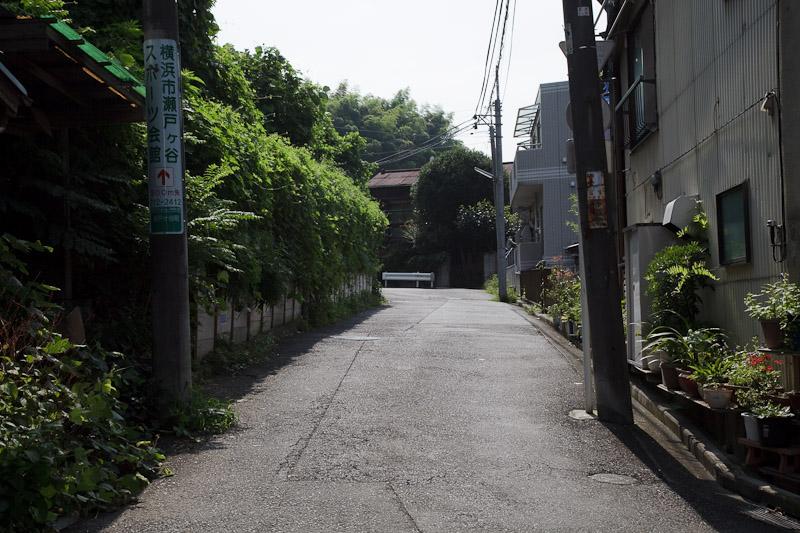 1_green.jpg