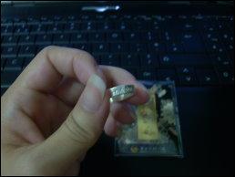 DSCI365302.jpg