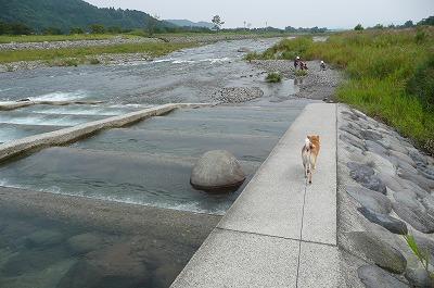 川~川~♪