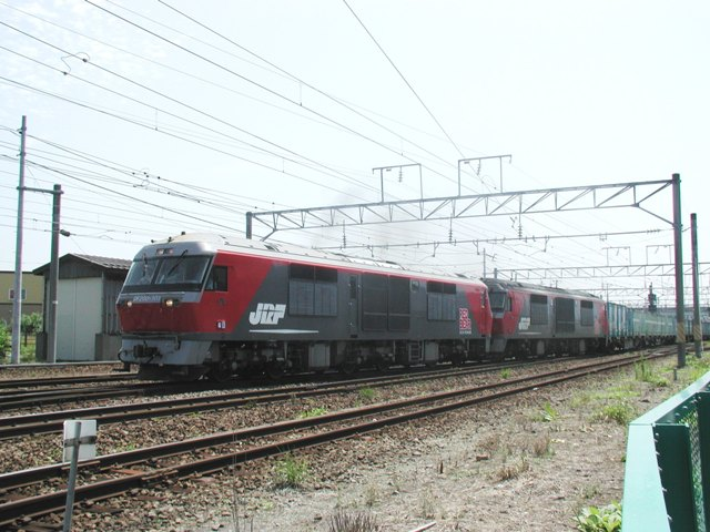 P8060046-1.jpg