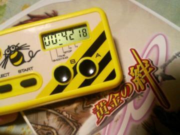 s-P1000010.jpg
