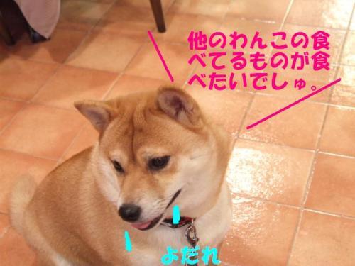 DSCF2570ー編集