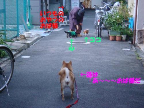 DSC01641ー編集