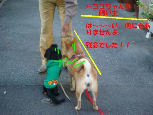 DSC01645ー編集