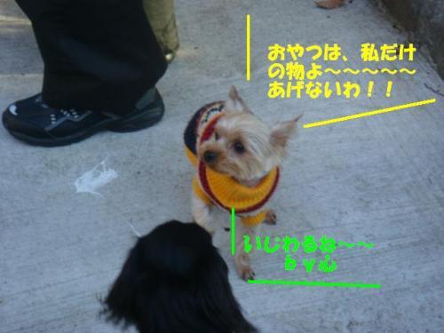 DSC01647ー編集