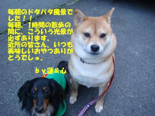DSC01648ー編集