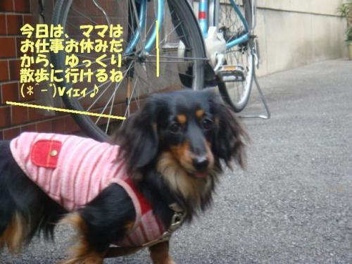 DSC01657ー編集