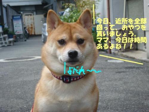 DSC01656ー編集