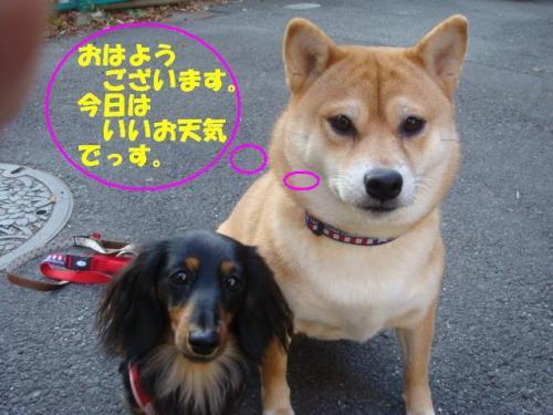 DSC01667ー編集