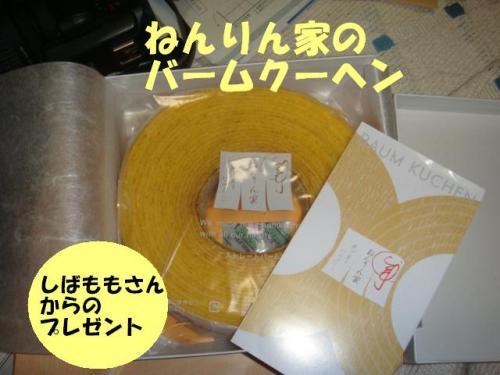 DSC01727ー編集
