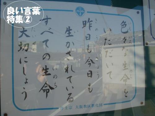 DSC01826ー編集