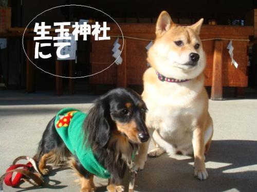 DSC01856ー編集