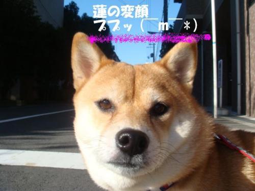 DSC01833ー編集
