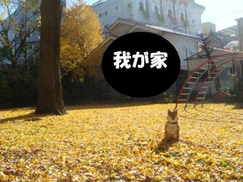 DSC01872ー編集