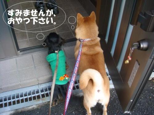 DSC01892ー編集