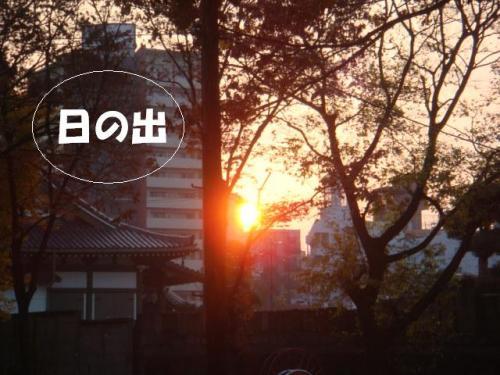 DSC01951ー編集