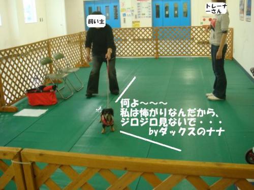 DSC01974ー編集