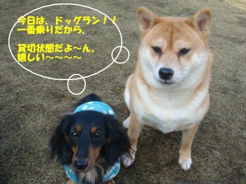 DSC01991ー編集