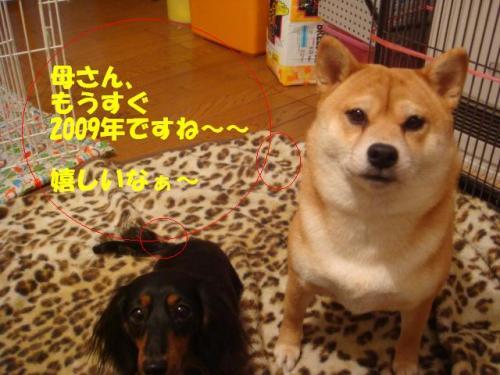 DSC02017ー編集