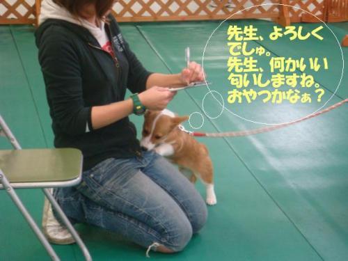 DSC02165ー編集