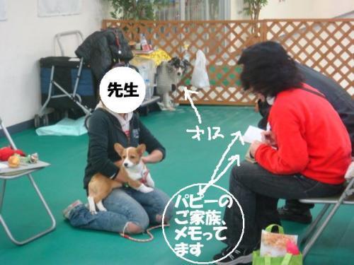 DSC02168ー編集