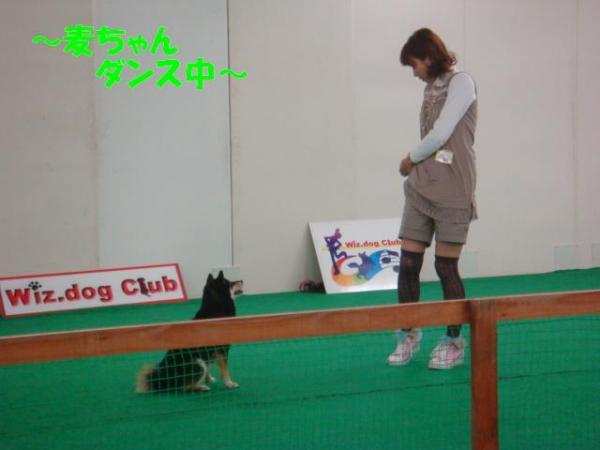 DSC02773ー編集