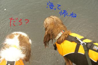 20090720 内緒話