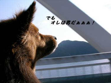 コピー ~ SANY8842