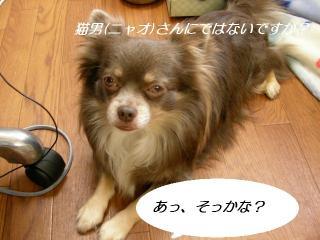 SANY4318.jpg