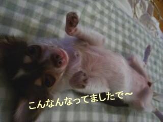 image0108.jpg