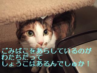 080702-2_20080702161301.jpg