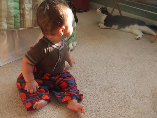 baby2_pants3.jpg