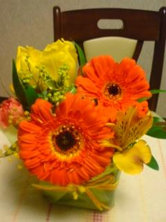 mokosurpriseflower.jpg