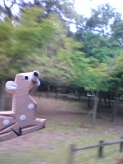 shikahashiru.jpg