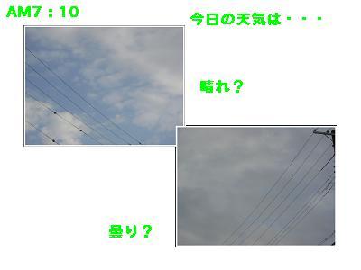 CIMG8765.jpg