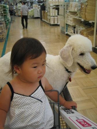 社会馴致2(6ヶ月齢)
