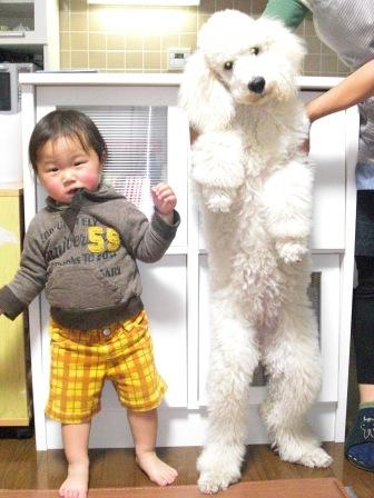 背比べ(5ヶ月齢)