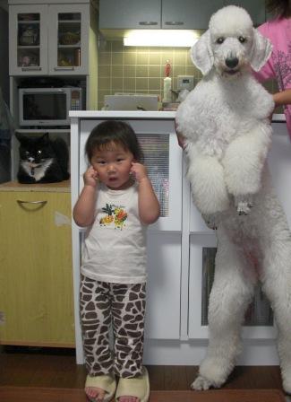 背比べ(6ヶ月齢)