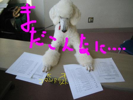 snap_stanputampopo_200982193225.jpg