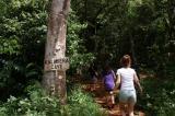 目立たないカラベラ洞窟の入口