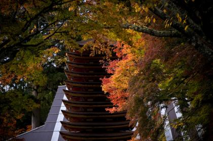 談山神社-3