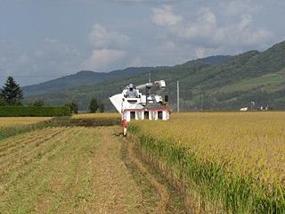 08稲刈り1