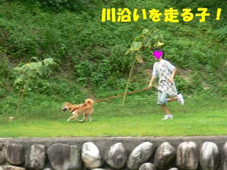 川土手を走る子