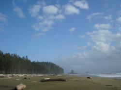 Day3 beach2