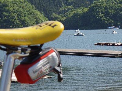 相模湖とトマジーニ