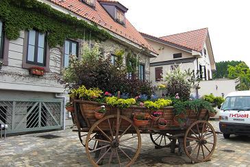 夢溢れるハイジの村